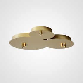 CEILING MOUNT 6